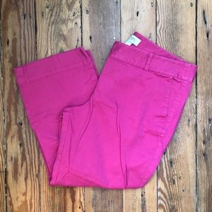 The LOFT pink cropped pants size 12